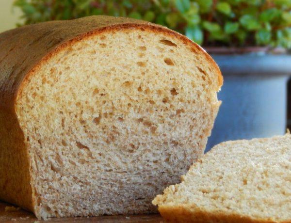 pan lactal intgegral pan de molde casero