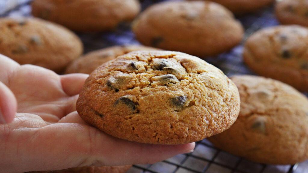 galletas con chips de chocolate galletitas cookies